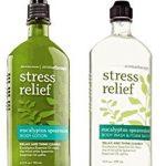 Bath & Body Works, Aromatherapy Stress Relief Body Lotion and Body Wash & Foam Bath, Eucalyptus Spearmint (Bundle of 2)