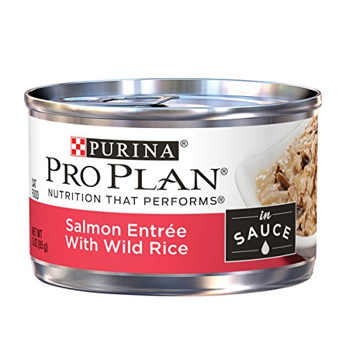 Purina Pro Plan Salmon & Rice Entree in Sauce Adult Wet Food - (24) 3 oz. Can