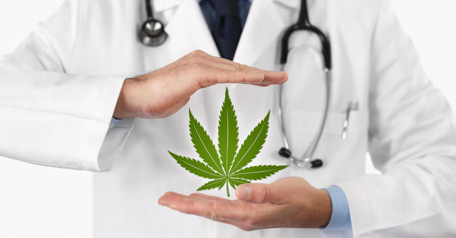 doctor holds marijuana leaf