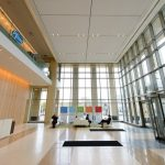 Pfizer's keys to juggling 8 U.S. launches? Organization, accountability, clear goals